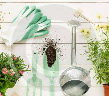 Ultimate Guide to Home Landscape Maintenance